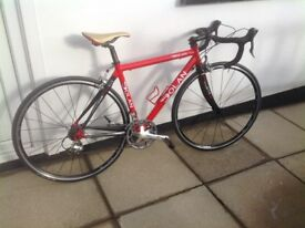For sale 46cm Terry Dolan