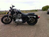Harley Davidson 883 Low 2007