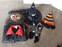 Bundle of Adult Halloween Dress Up Items