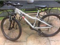 Ridgeback MX24 children's Terrain bike, silver