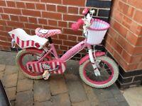 Little kitty bike