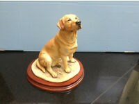 Border Fine Arts china labrador dog - excellent condition