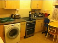 QUIET NON-PARTY HOUSE***SAFE AREA**CENTRAL LOCATION**SHARED LIVING ROOM***LARGE SPACIOUS DOUBLE ROOM