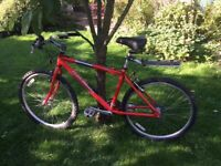 Raleigh Redback Mountain Bike