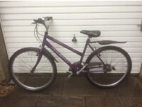 RALEIGH LADIES BIKE FOR SALE-GOOD CONDITION-FREE DELIVERY