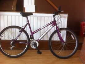 "Ladies mountainbike - 19"" Ignite Charisma , 18-speed, 26"" wheels"