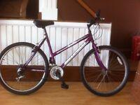 "Ladies mountainbike - 19"" Ignite Charisma , 18-speed, 26"" wheels"