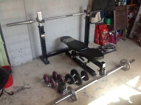 Weight Bench, weight plate set, barbells & dumbells. Commercial grade bench & Olympic bars/weights
