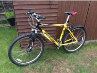 "Men's specialized bike 19"" frame"