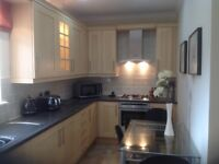 Light oak kitchen for sale including oven, hob, extractor, under counter fridge and freezer