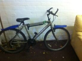 Gents Mountain Bike (Raleigh) 15 speed in good condition (Collection Only)