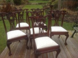 MAHOGANY CHIPPENDALE STYLE DINING CHAIRS