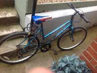 Ladies 10 speed mountain bike £20 ideal student bike