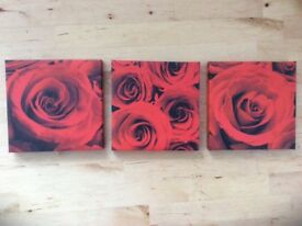Set of 3 red rose pictures