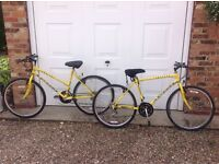 Matching Ladies/Gents Cycles in excellent condition. All terrain - multiple gears £60.00 each