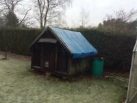 Old Chicken Shed