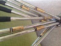 Golf clubs, set of 10