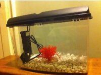 Aquarium (Fish Tank) 12L + accessories
