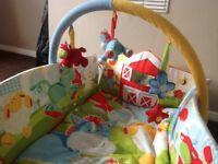 Baby gym/playmat