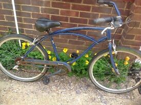 Schwinn Cruiser (summer project)