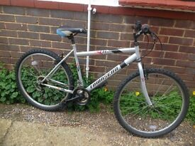 Adults Townsend 18 Speed Mountain Bike