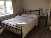 Large double Room for professional person