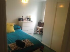 Double bedroom up for rent