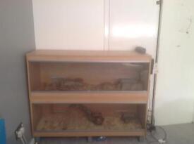 Two vivariums for sale beech effect