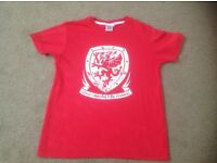 Junior Gorau Chwarae Cyd Chwarae Welsh Football T Shirt