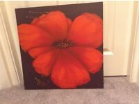 Hand painted red flower pictures