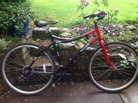 Mens Raleigh Cruz Bicycle