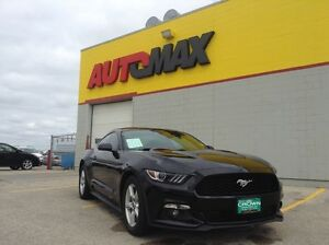 2015 Ford Mustang Ecoboost *Turbo/USB/Tint*