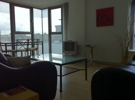 IMMACULATE MODERN FULLY FURNISHED TWO BEDROOM FLAT IN CENTRAL LOCATION; CLOSE TO ALL UNIVERSITIES