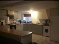 LOVELY LIGHT SPACIOUS 7 DOUBLE BED STUDENT HOUSE , 5 MINUTE WALK FROM UNI