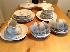Royal Doulton china dinner service and tea set(Tunbling Leaves)