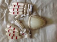 Cricket batting gloves and protective box