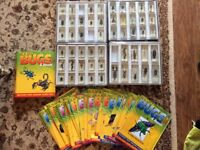 Collector bugs and insects