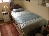 Single Bed in vgc