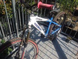 Kona custom mountain bike BARGAIN