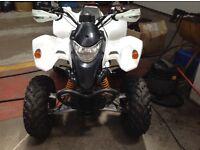 Quadzilla 250cc road legal quad bike