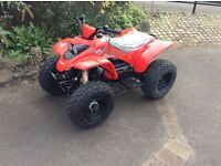 QUADZILLA RAM R100 100CC QUAD BIKE (BRAND NEW READY TO RIDE)