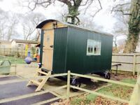 Shepherd's Hut for spare room or Glamping