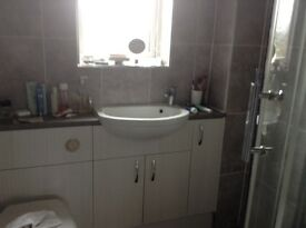 Corner shower, toilet and small washbasin built into grey surround, £50
