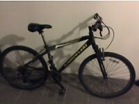 Mountain bike in full working condition, step up and go