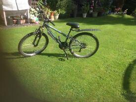 Apollo second hand bike