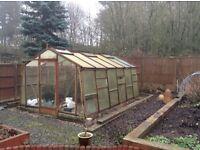 An Alton Greenhouse 10*16 feet approximately