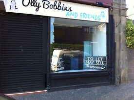 Total £500 per month shop in dundee street carnoustie mobile number 07501981427