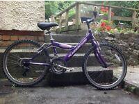 """Girls Bicycle 24"""""""