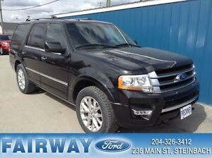 2015 Ford Expedition Limited AWD*Ecoboost*Leather*Moonroof*Navi*