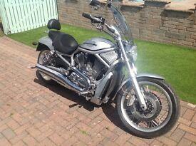 Harley Davidson V Rod VRSCAWA